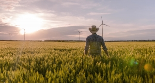 Ambitious Farmer Wheat Field Windmill Sunlight Landscape Nature Agriculture Growth Drone Footage Renewable Energy Man Sky