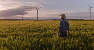 Ambitious Farmer Wheat Field Windmill Sunlight Agricultural Landscape Nature Growth Footage Renewable Energy Man Sky