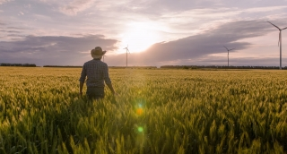 Farmer Wheat Field Ambitious Sunlight Agricultural Windmill Landscape Nature Growth Man Sky Footage Renewable Energy