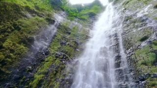Low Angle Footage Waterfall Forest Hawaii Water Moss Rock Green Nature Travel Beautiful Rainforest Island Environment Tourism 4K