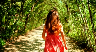 Nature Tree Pathway Young Woman Walking Forrest Park Nature