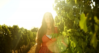 Beautiful Woman Walking Caressing Vine at Vineyard Harvest Concept