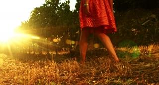 Young Woman Walking Vineyard Wine Grape Harvest Season Concept
