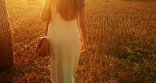 Business Woman Walking Wheat Field Harvest Agriculture Business Concept
