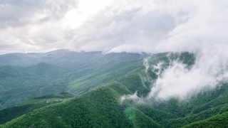 Aerial Mountains Green Clouds Scenic Landscape Foliage Adventure Drone Asia Remote Ecology Sunlight Fog Scenery Travel Nature Footage Beauty Idyllic Sky Evergreen Forest Air