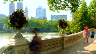 NEW YORK, USA - CIRCA JULY 2016: Time Lapse of Central Park Bow bridge as tourist pass by and take pictures.