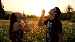 Cute Young Couple Blowing Dandelions Laughing Sunset Field