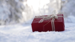 Christmas Present Outdoors Snow Falling Background
