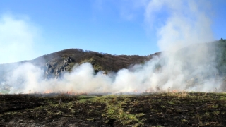 Natural Disaster Fire Smoke over Burned Fields Danger Nature