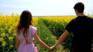 Young Couple Walking Down Yellow Summer Flower Field HD