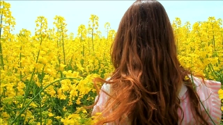Young Woman in Vintage Dress Running Field Touching Flowers HD