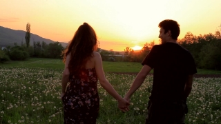 Cute Young Couple Walking Summer Dandelion Field at Sunset HD