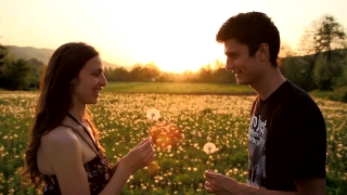 Cute Young Couple Blowing Dandelions Laughing Sunset Summer