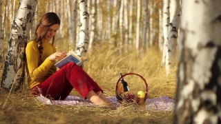 Reading Outdoors Nature Concept