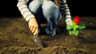 Woman Planting Flower