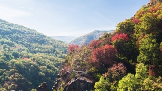 4K Footage Of Colorful Trees And Mountains On Sunny Day Autumn Season Forest Aerial Sky Canyon Scenic Village Travel Heavenward