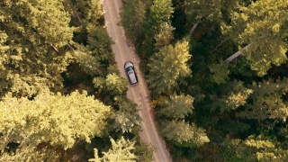 Aerial Shot Of Car Driving Through Forest Road Drone Travel Countryside Adventure Tree Slow Motion Autumn Nature Scenic Sunlight