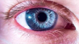 Blue Eye Opens Up And Closes Macro Shot Humanity Purpose Existence Concept 4K