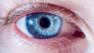 Beautiful Blue Eye Opening Up And Closing As Pupil Contracts And Dilates Macro Close Up Shot 4K Life Existence Concept