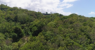 Aerial Shot Fly Over Exotic Caribbean Ocean Coast Jamaican Nature Landscape Summer Vacation Destination Summer Getaway Concept Slow Motion 4k