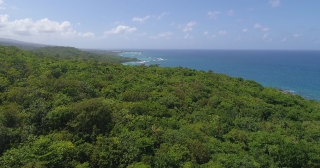 Aerial Flying Over Exotic Ocean Shoreline Jamaica Scenic Seascape Summer Vacation Destination Tourism And Travel Concept Slow Motion 4k