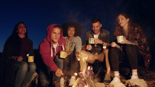 Attractive Multiracial Group Of Young Friends Around Burning Camping Bonfire In The Woods Drinking Tea And Laughing Vacation In Nature Happy Picnic Party In Nature Concept Slow Motion Shot On Red Epic