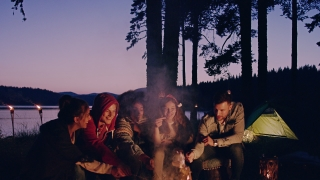 Group Of Happy Friends Sitting Around Bonfire At Dusk In Forest Laughing And Holding Marshmallows Nature Tourism Travel Party Concept Slow Motion Shot On Red Epic W 8k
