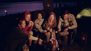 Happy Young Group Of Campers Sitting And Smiling Around Forest Camp Fire In The Evening Roasting Marshmallows And Smiling Camping In Nature Romantic Getaway Concept Slow Motion Shot On Red Epic W 8k
