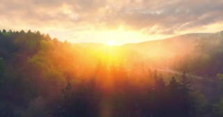 Epic Aerial Shot Over Mist Forrest Sunset Beautiful Fall Season Forrest Early Morning In The Mountains Spirituality Inspiration Hiking And Tourism Concept