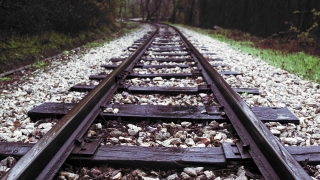 Passing Close To Train Tracks on Abandoned Rails Apocalyptic World Fallout Life Journey Concept Slow Motion 4K Dolly
