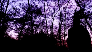 Young Depressed Man Doing Sport At Dusk Solitude Sport Slow Motion 4 K Raw