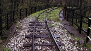 Hovering Over Abandoned Train Tracks Through Forest, Society Break Down Crisis Natural Disaster Slow Motion 4K