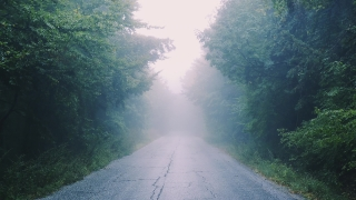 Hovering Over Mountain Path With Fog Rainy Day Youth Depression Life Journey Social Distance Slow Motion 8 K