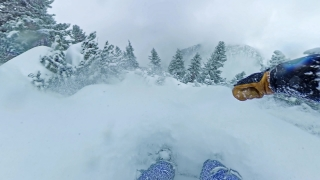 POV Snowboard Man Rider Sliding Down A Slope Tress Woods Winter Sport Action Extreme Snow Adventure 360 Wide Angle Slow Motion 8k Hdr