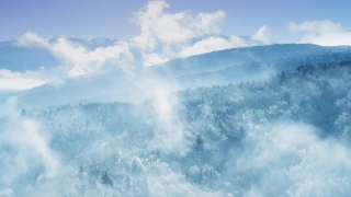 Drone Aerial Over Misty Forrest Winter Mountain Pines Golden Hour Colors Beautiful Colors Sky Cold Weather Cinematic Flight 4k
