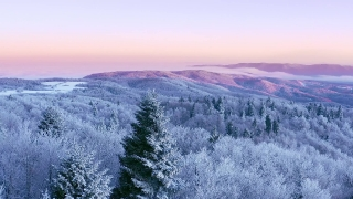 Mountain Frosty Winter Trees Beautiful Nature Golden Hour Holiday Travel And Tourism Snowy Pines Vibrant Colors Aerial 4k