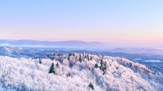 Snow Covered Winter Trees Alpine Landscape Golden Hour Mountain Tops Holiday Travel And Tourism Frosty Pines Vibrant Colors Aerial 4k