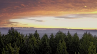 Drone Aerial Over Winter Mountain Trees Early Morning Mist Colorful Purple Orange Sky Christmass Holiday Cinematic Flight 4k