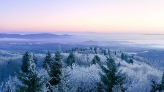 Mountain Frosty Winter Trees Beautiful Nature Golden Hour Mountain Tops Holiday Travel And Tourism Frosty Pines Vibrant Colors Aerial 4k