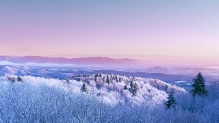 Mountain Frosty Winter Trees Beautiful Nature At Sunset Sunrise Winter Vacation Frosty Tree Tops Vibrant Colors Aerial 4k