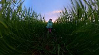 Child Tracking Shot From Behind Playing Outside At Sunset Holiday Happy Childhood 360 Vr Footage First Person 8k Slow Motion