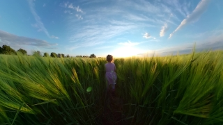 Rear View Of Young Girl Playing In The Field During Quarantine Vacation Happy Childhood 360 Vr Footage First Person 8k Slow Motion