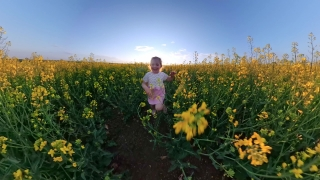 Cute Little Girl Running In The Park In The Summer Love Family Happy Childhood Happiness Concept Travel 360 Vr Footage First Person 8k Slow Motion