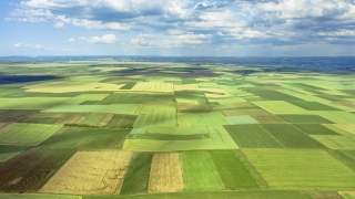 Aerial Drone Flight Hyperlapse Over Endless Green Agricultural Field On Cloudy Spring Day Organic Farming Sustainable Agriculture 4K