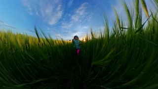 Cute Little Girl Having Fun Outdoors In The Summer Nature And Exploration Happy Family 360 Vr Footage First Person 8k Slow Motion