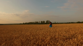 Beautiful Young Woman Walking Through Field Of Wheat Paradise Spirituality Freedom Concept Nature Beauty Sunset Aerial Flight Close Up Camera Spinning Religion Afterlife Concept