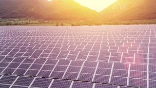 Alternative Green Energy Solar Panel Farm Nature Environment Sunset Colors Renewable Energy Concept