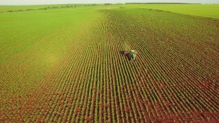Corn Field Aerial Tractor Spraying Pesticides Crop Modification Healthy Living Food Farming Summer Farming Concept