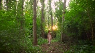 Beautiful Young Woman Fairy Tale Dress Princess Beauty Walking Down Forest Sunset Dream Sequence Concept