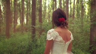Gorgeous Young Bride Woman Walking Through Forest Trees Sunset Mist Hope For Future Concept Vintage Style Romance Retro